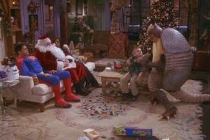 TOW the holiday armadillo - everyone