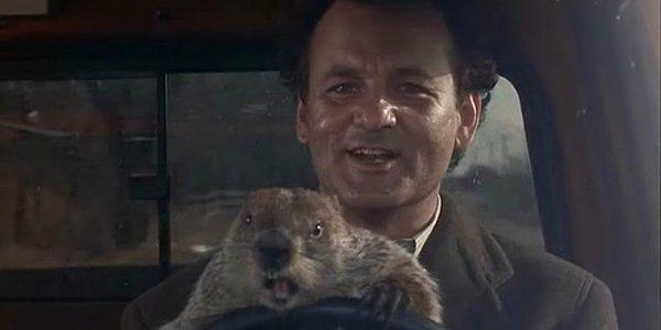 Groundhog-Day-4